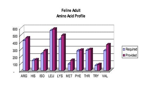Feline Amino Acide Profile - Feline Fitness & Health