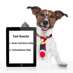 Dog Graphic, Test Results