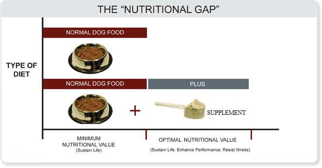 "A Nutritional Gap exists between the ""typical"" pet diet and optimum nutrition."
