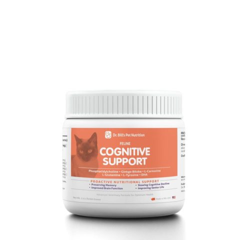 Feline Cognitive Support