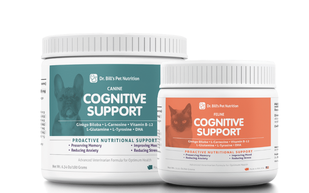 Supporting Cognitive Function in Dogs & Cats
