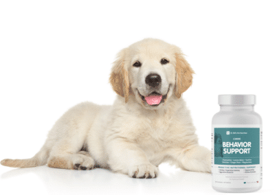 Best Behavior Support Supplement for Dogs at Every Age