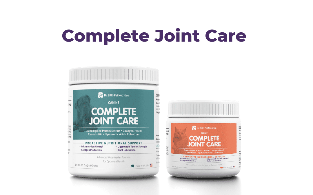 Joint Care Supplement for Dogs and Cats