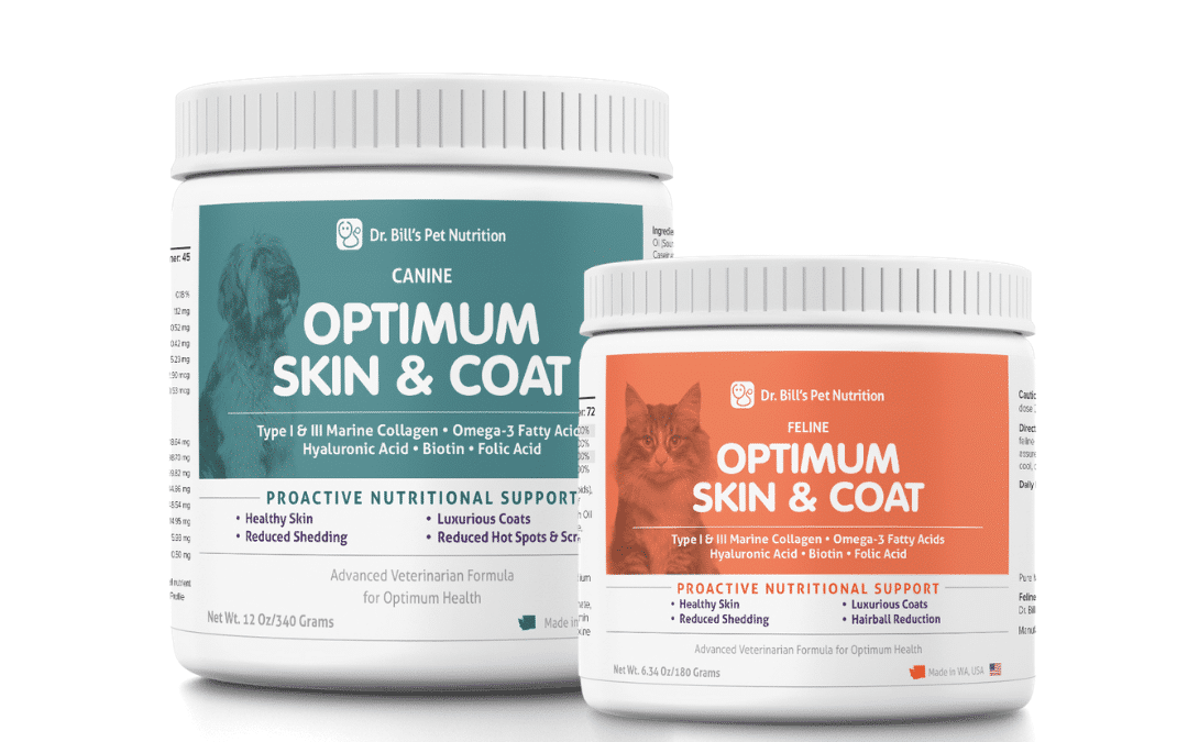 Skin and Coat Supplement for Dogs and Cats